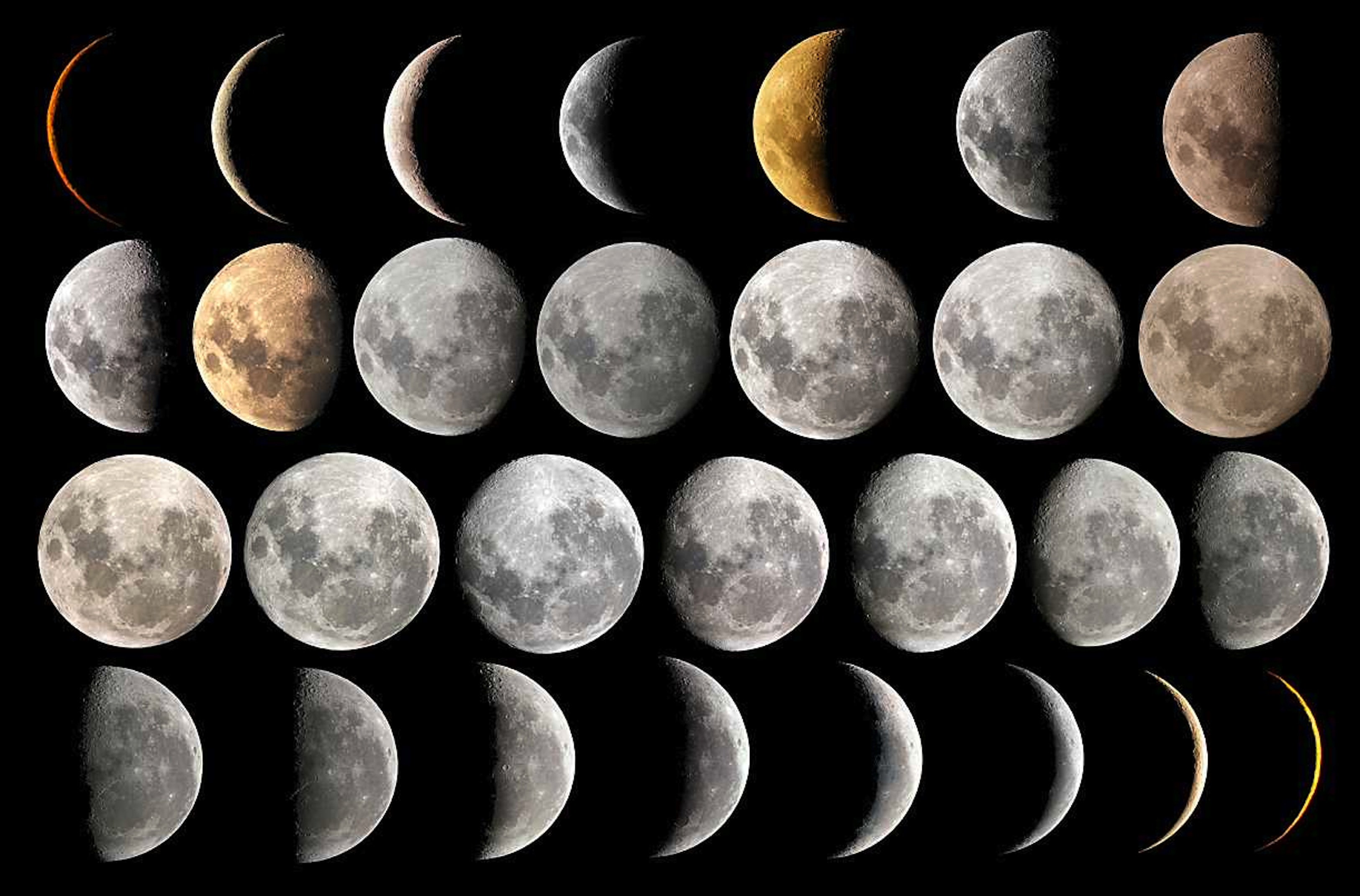 THE PHASES OF THE MOON | Guybrarian