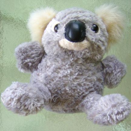 koala-squared2